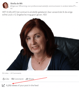 Sheila de Wit -LinkedIn views