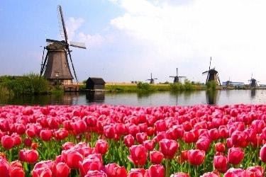 Engelse uitdrukkingen over de 'Dutch'