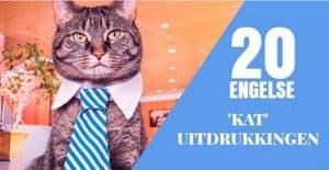 20-Engelse-katten-uitdrukkingen
