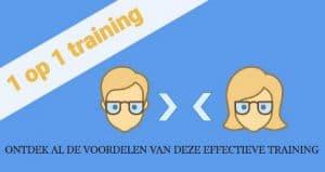 Cursus zakelijk Engels 1 op 1 training-plaatje